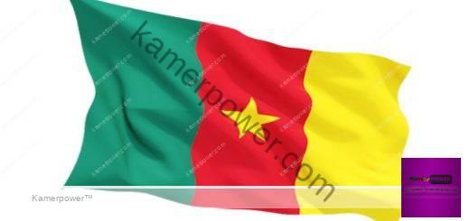 Cameroun Info