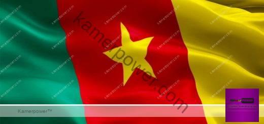 Constitution camerounaise de 1972, 1961, 1960, 1996, 2008