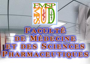 FMSP de l Université de Douala Cameroun Kamerpower