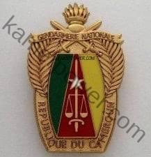 Gendarmerie Nationale Camerounaise MINDEF Cameroun Recrutement l'Armée de l'Air 2016