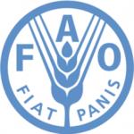 FAO cameroun recrutement Offre d'Emploi