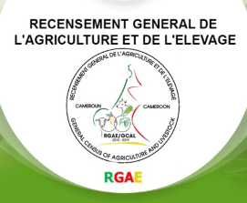 Recrutement RGAE Cameroun 2018-2019 MINADER MINEPIA Agents Recenseurs et Contrôleurs Information Technology